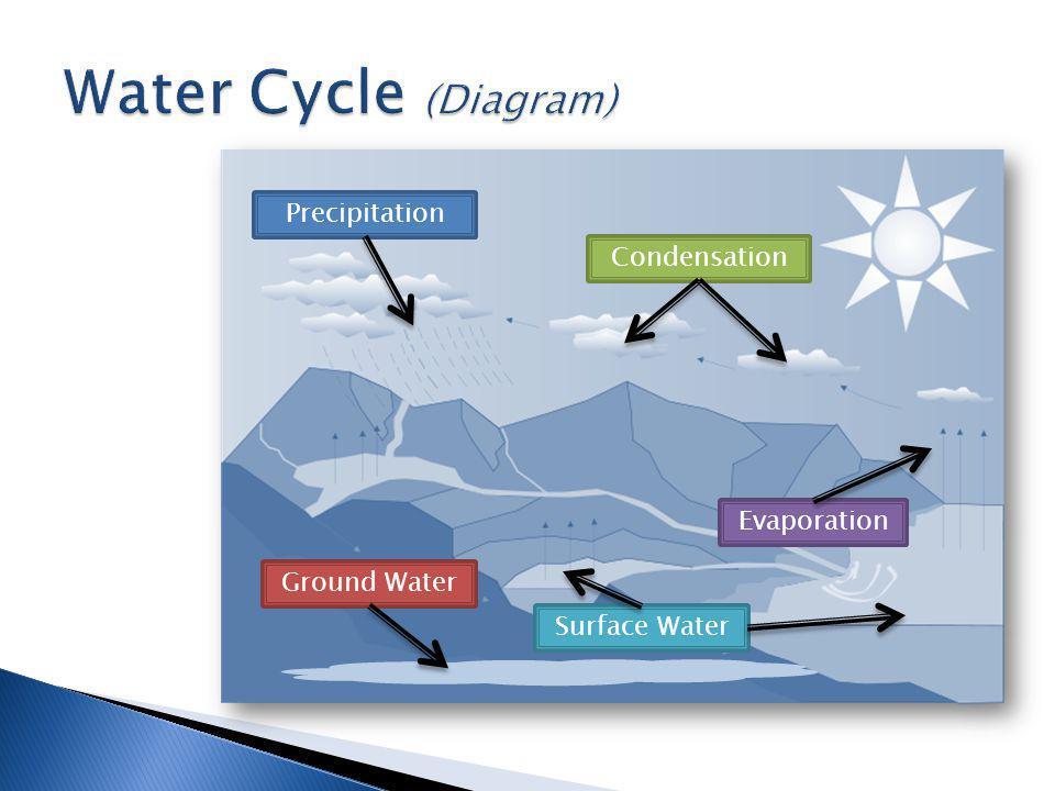 Precipitation Condensation Evaporation Surface Water Ground Water
