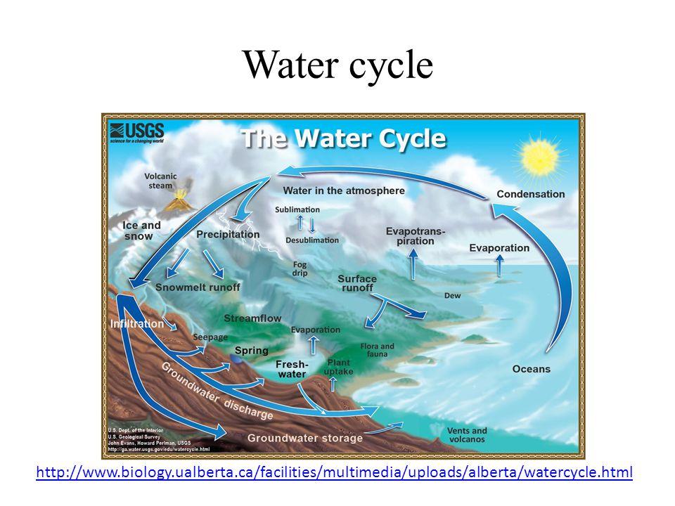 Water cycle http://www.biology.ualberta.ca/facilities/multimedia/uploads/alberta/watercycle.html