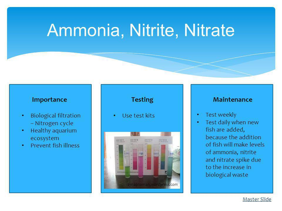 Ammonia, Nitrite, Nitrate Master Slide ImportanceTestingMaintenance synaptoman.wordpress.com Test weekly Test daily when new fish are added, because the addition of fish will make levels of ammonia, nitrite and nitrate spike due to the increase in biological waste Biological filtration – Nitrogen cycle Healthy aquarium ecosystem Prevent fish illness Use test kits