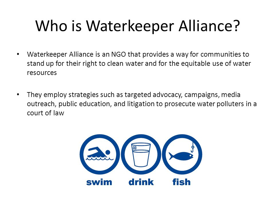 Our Role: The New International Platform Traditionally, Waterkeeper Alliance has been a national, US-based environmental NGO with satellite WKOs that have recently formed all around the globe As of January, the Waterkeeper Alliance headquarters in NYC hired their first ever International Director to transition their platform from a national to international one Waterkeeper Alliance contacted GPIA to carry out their new mission of supporting their international network of WKOs