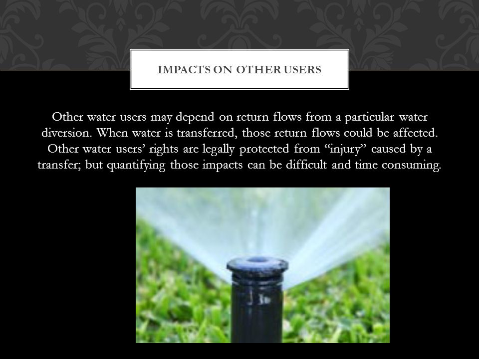 Other water users may depend on return flows from a particular water diversion.