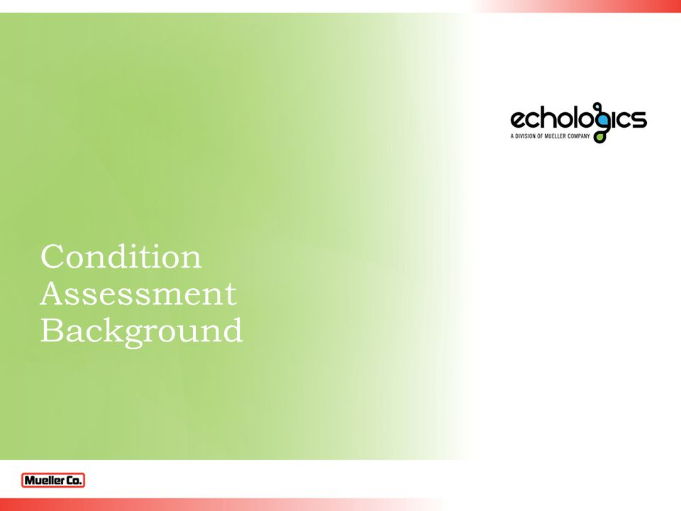 Condition Assessment Background