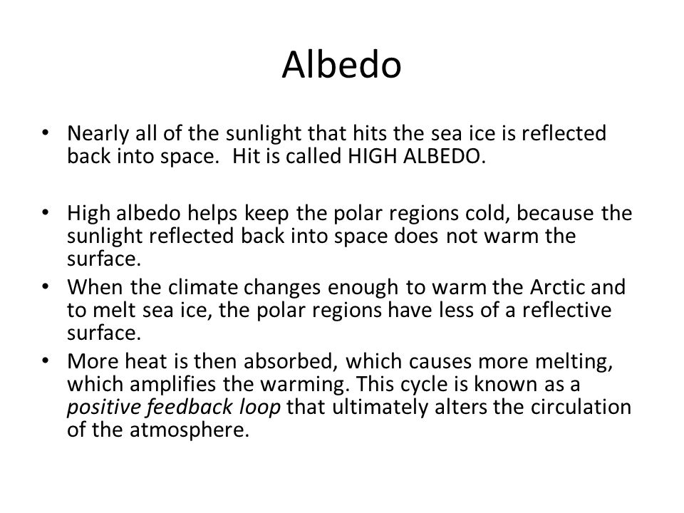 Albedo Nearly all of the sunlight that hits the sea ice is reflected back into space.
