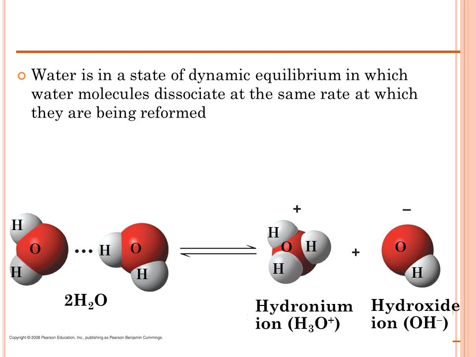 Water is in a state of dynamic equilibrium in which water molecules dissociate at the same rate at which they are being reformed Hydronium ion (H 3 O + ) Hydroxide ion (OH – ) 2H 2 O H H H H H H H H O O O O