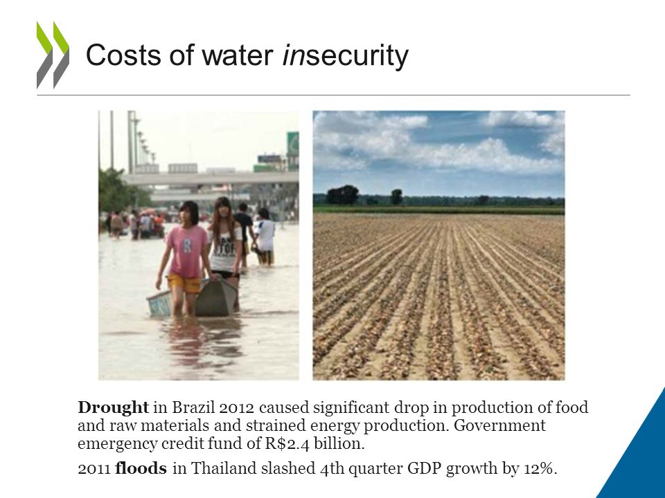 Drought in Brazil 2012 caused significant drop in production of food and raw materials and strained energy production.