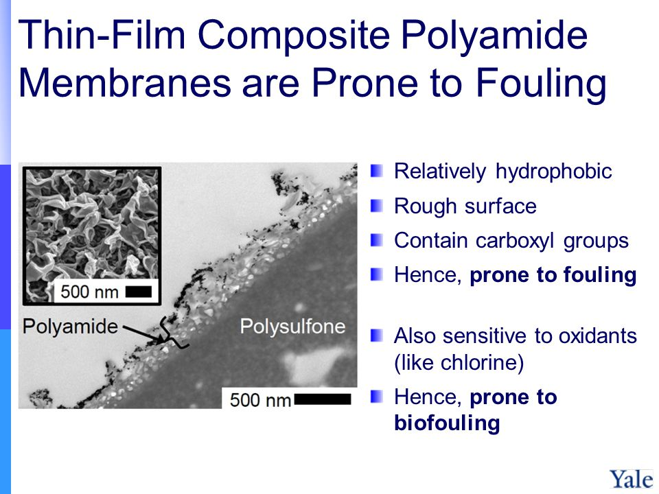 Thin-Film Composite Polyamide Membranes are Prone to Fouling Relatively hydrophobic Rough surface Contain carboxyl groups Hence, prone to fouling Also sensitive to oxidants (like chlorine) Hence, prone to biofouling