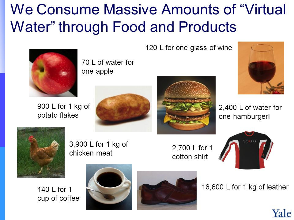 We Consume Massive Amounts of Virtual Water through Food and Products 120 L for one glass of wine 900 L for 1 kg of potato flakes 16,600 L for 1 kg of leather 2,400 L of water for one hamburger.