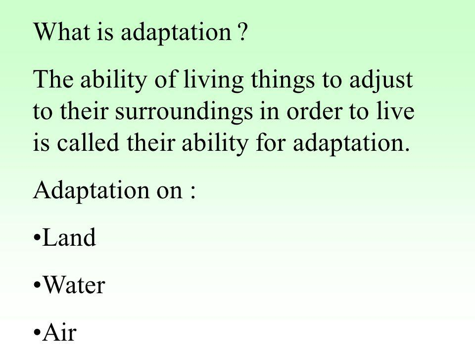 What is adaptation ? The ability of living things to adjust to their surroundings in order to live is called their ability for adaptation. Adaptation