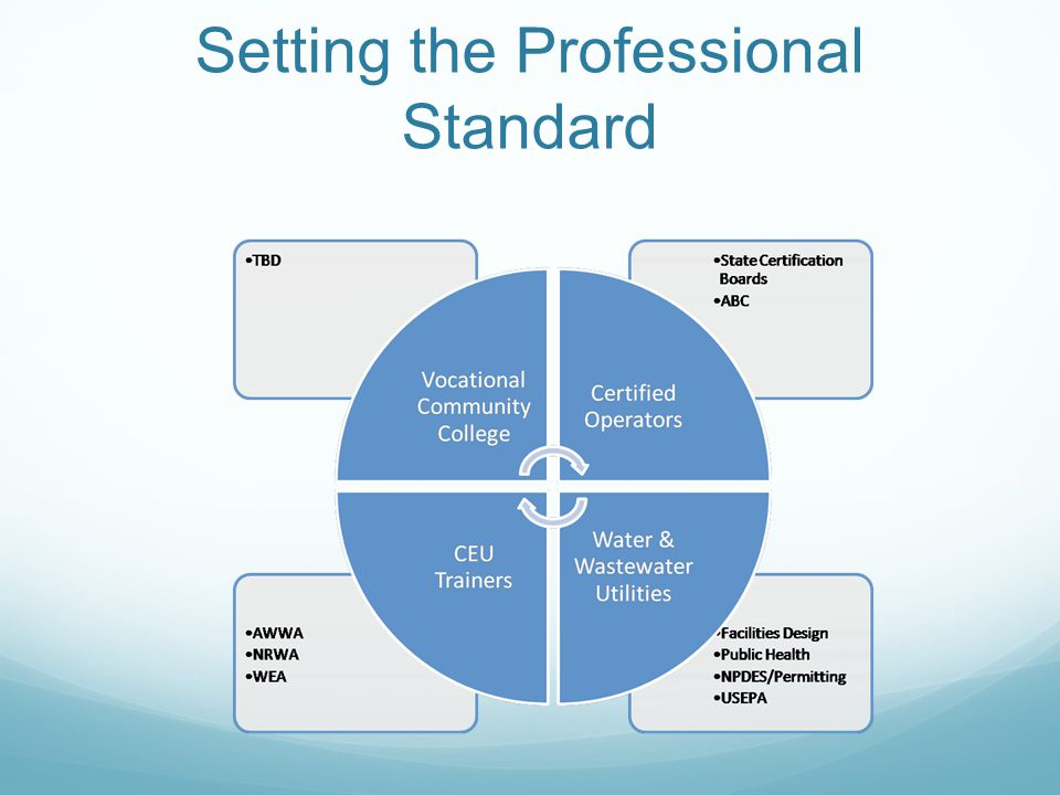 Setting the Professional Standard
