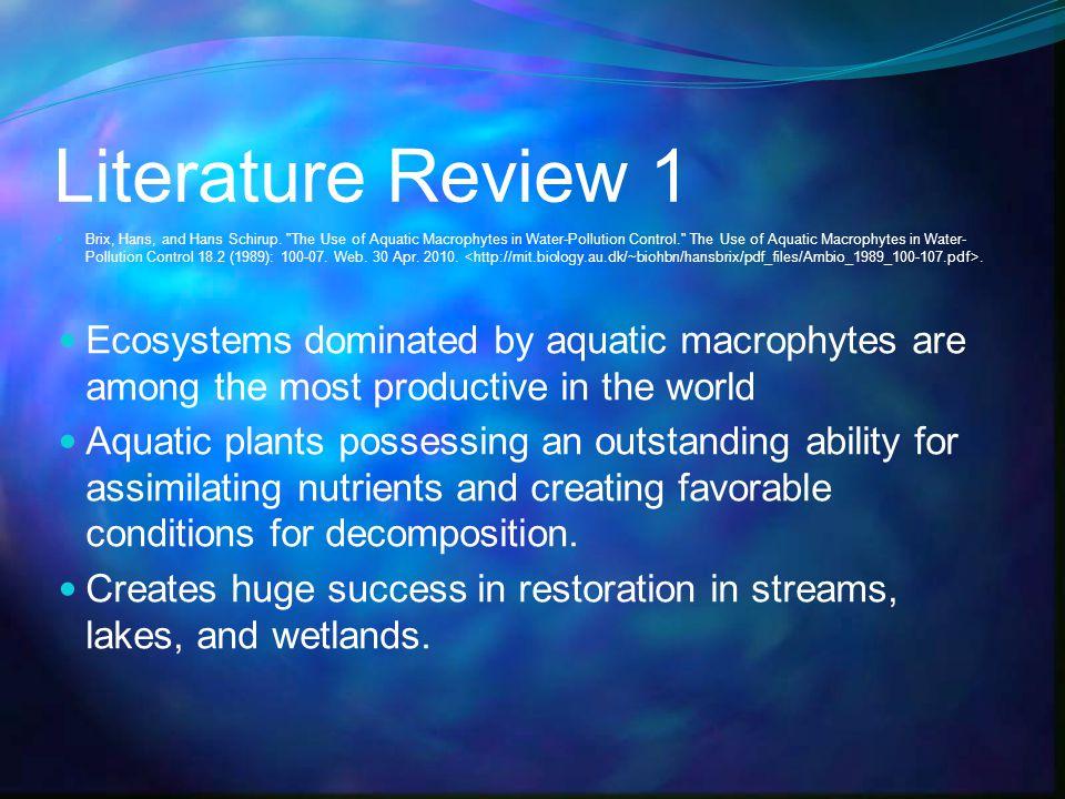 Literature Review 1 Brix, Hans, and Hans Schirup.