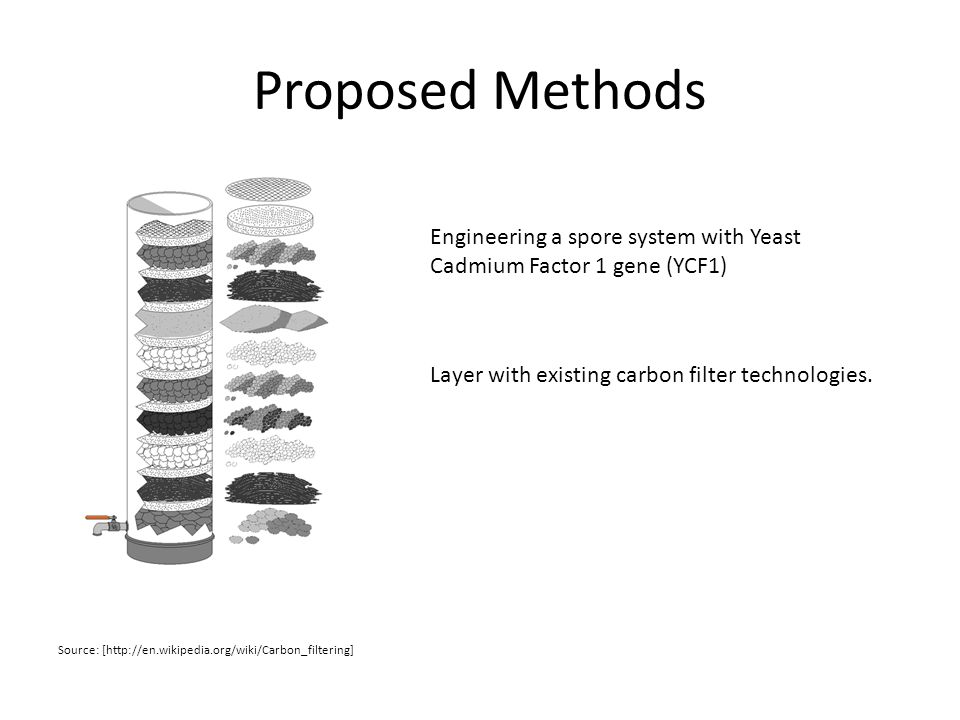 Proposed Methods Engineering a spore system with Yeast Cadmium Factor 1 gene (YCF1) Source: [http://en.wikipedia.org/wiki/Carbon_filtering] Layer with existing carbon filter technologies.