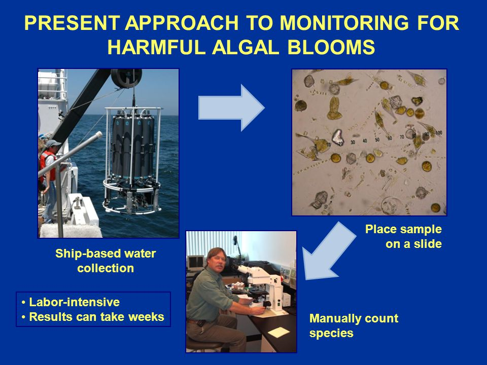 PRESENT APPROACH TO MONITORING FOR HARMFUL ALGAL BLOOMS Ship-based water collection Manually count species Place sample on a slide Labor-intensive Results can take weeks