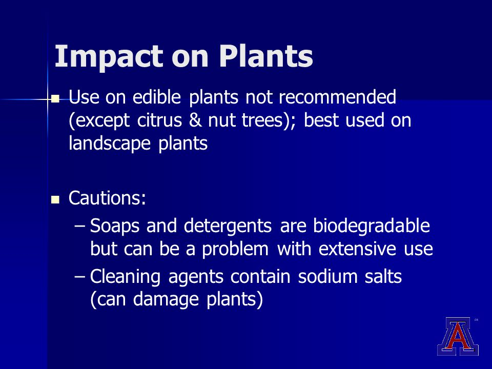 Impact on Plants Use on edible plants not recommended (except citrus & nut trees); best used on landscape plants Cautions: – –Soaps and detergents are biodegradable but can be a problem with extensive use – –Cleaning agents contain sodium salts (can damage plants)