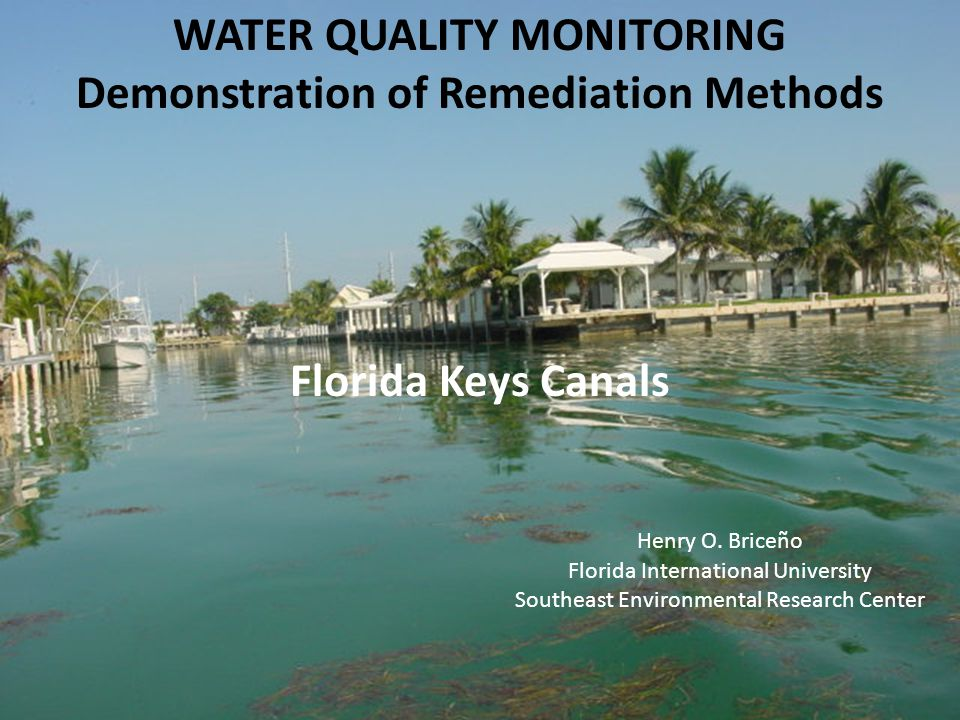 WATER QUALITY MONITORING Demonstration of Remediation Methods Florida Keys Canals Henry O.
