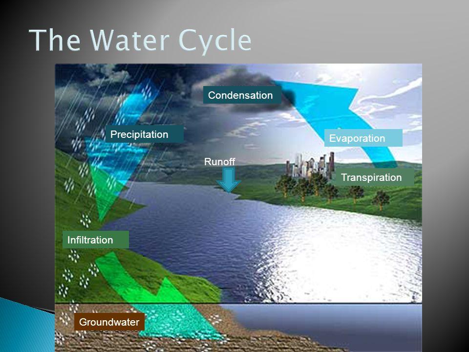 Runoff Condensation Infiltration Precipitation Evaporation Transpiration Groundwater