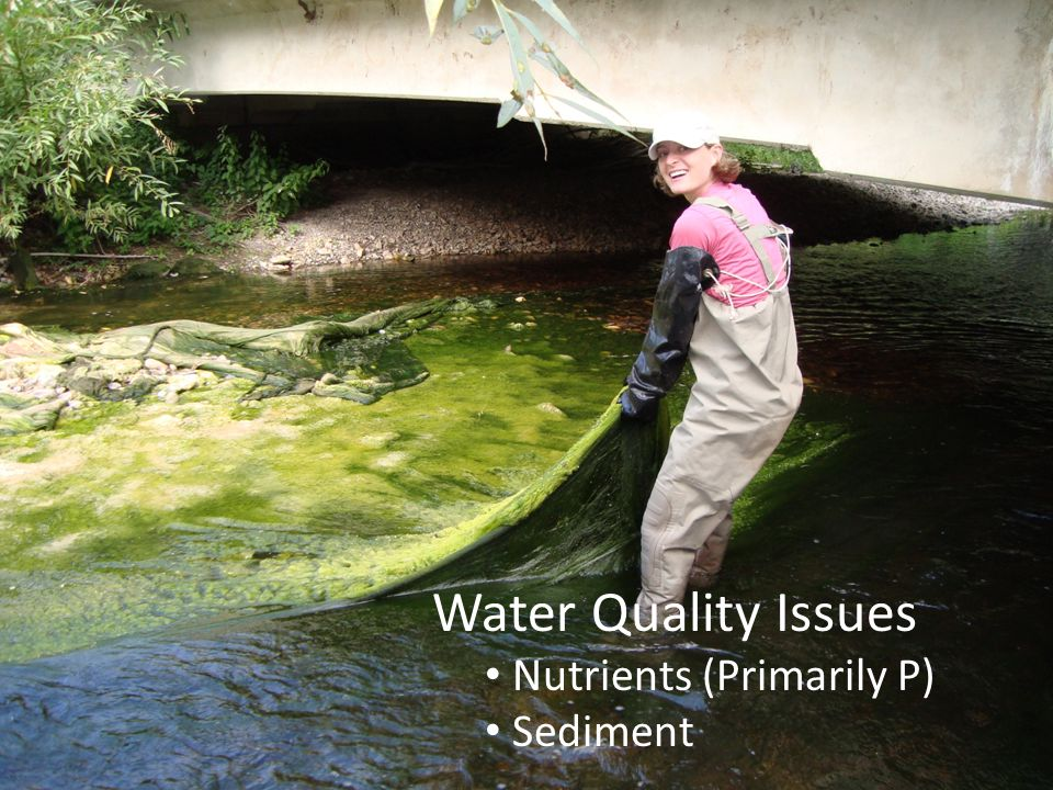 Water Quality Issues Nutrients (Primarily P) Sediment
