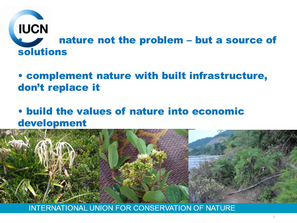 INTERNATIONAL UNION FOR CONSERVATION OF NATURE 3 nature not the problem – but a source of solutions complement nature with built infrastructure, dont replace it build the values of nature into economic development