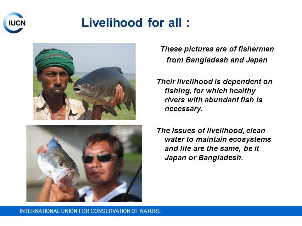 INTERNATIONAL UNION FOR CONSERVATION OF NATURE Livelihood for all : These pictures are of fishermen from Bangladesh and Japan Their livelihood is dependent on fishing, for which healthy rivers with abundant fish is necessary.