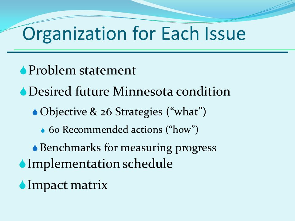 Organization for Each Issue Problem statement Desired future Minnesota condition Objective & 26 Strategies (what) 60 Recommended actions (how) Benchmarks for measuring progress Implementation schedule Impact matrix