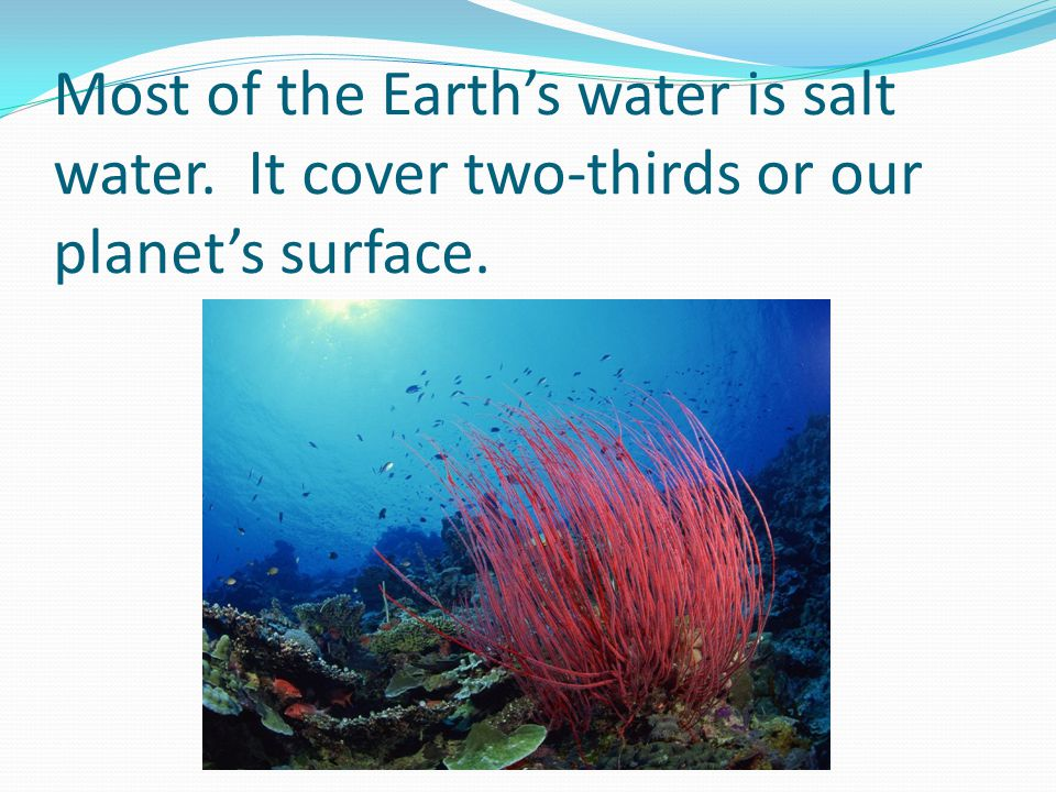 Most of the Earths water is salt water. It cover two-thirds or our planets surface.