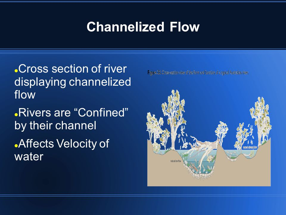 Channelized Flow Cross section of river displaying channelized flow Rivers are Confined by their channel Affects Velocity of water