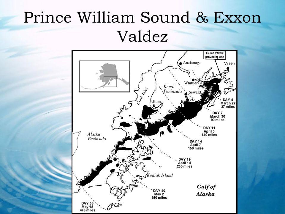 Prince William Sound & Exxon Valdez