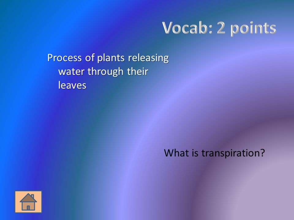 Process of plants releasing water through their leaves What is transpiration