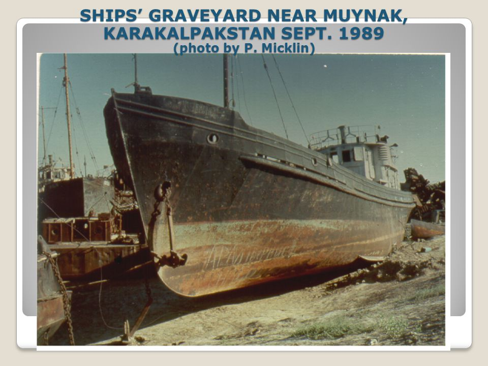 SHIPS GRAVEYARD NEAR MUYNAK, KARAKALPAKSTAN SEPT. 1989 (photo by P. Micklin)