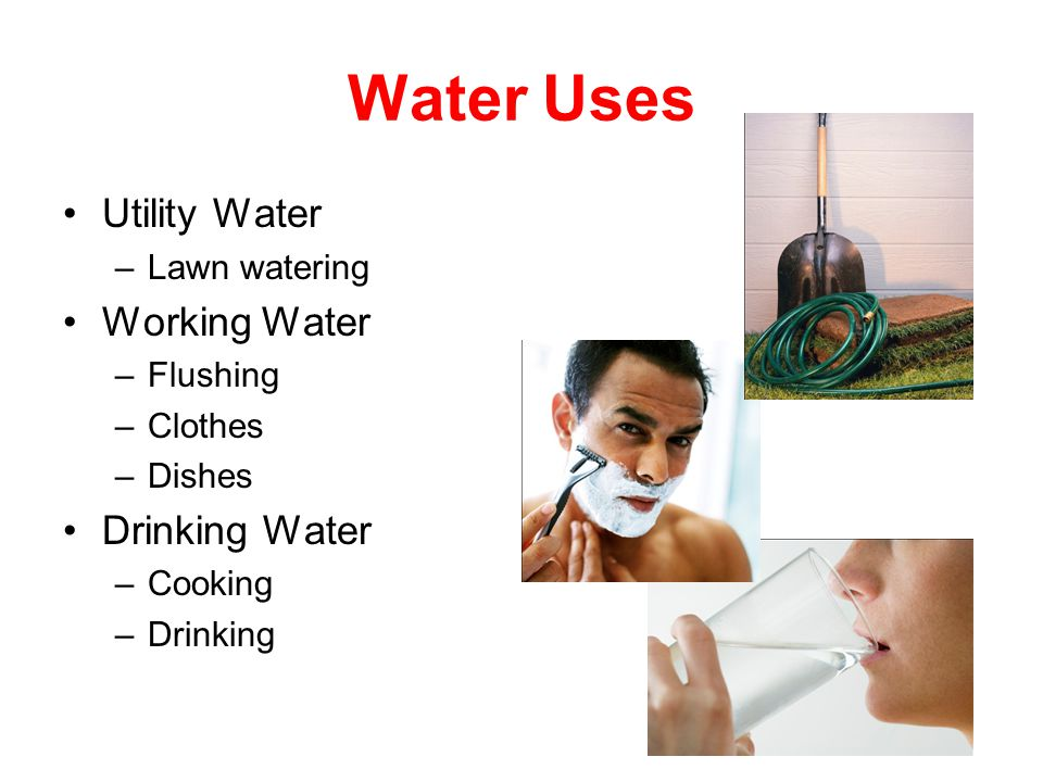 Water Uses Utility Water –Lawn watering Working Water –Flushing –Clothes –Dishes Drinking Water –Cooking –Drinking