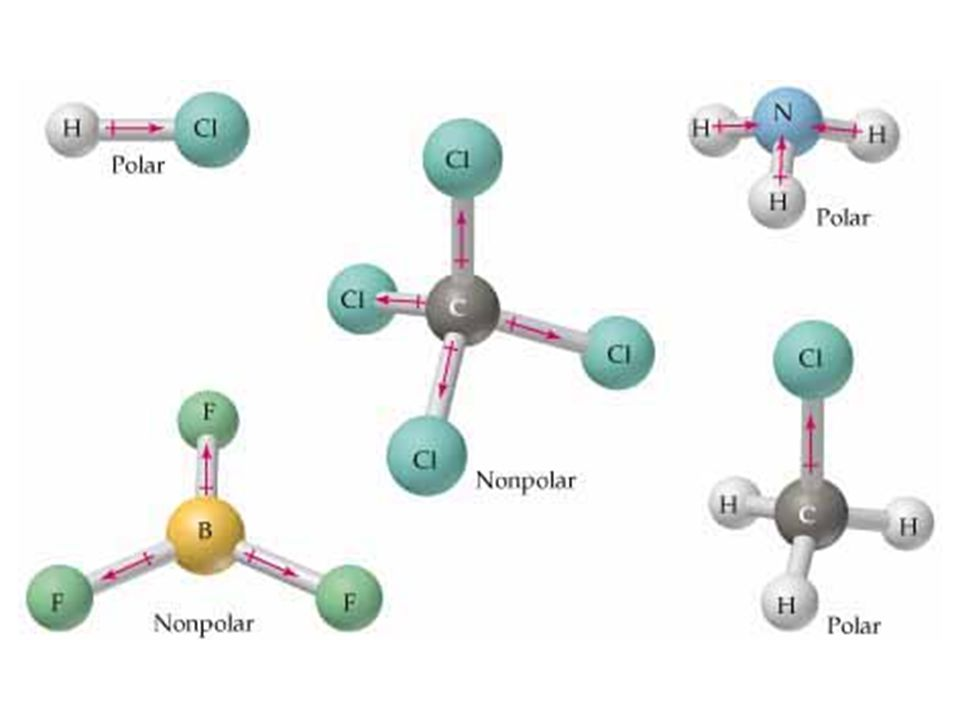 Hydrogen Bonds Attraction of partial opposite charges between hydrogen and oxygen [for example] Polar molecules attract to other polar molecules.