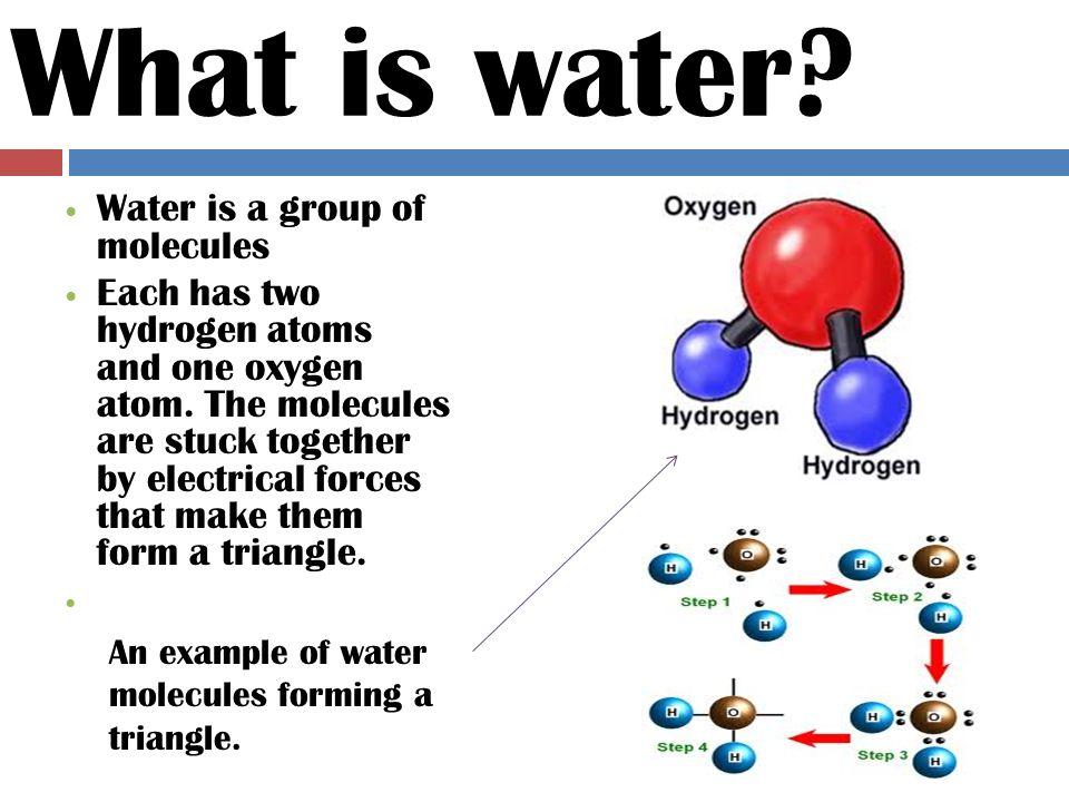 W HY DO WE NEED WATER . Everyone needs water.