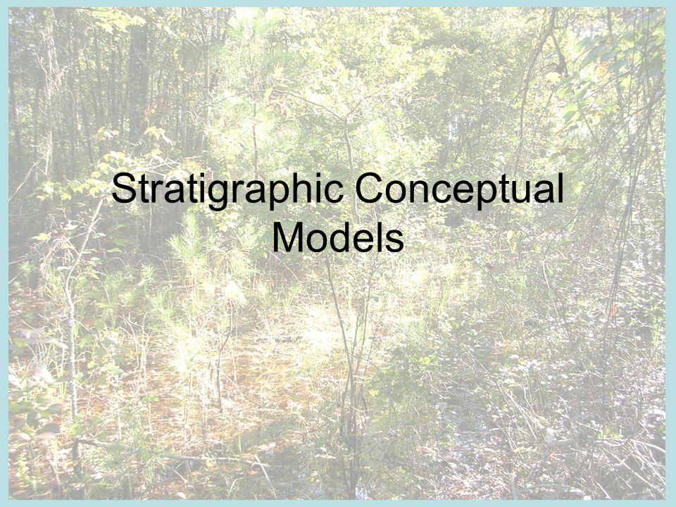 Stratigraphic Conceptual Models