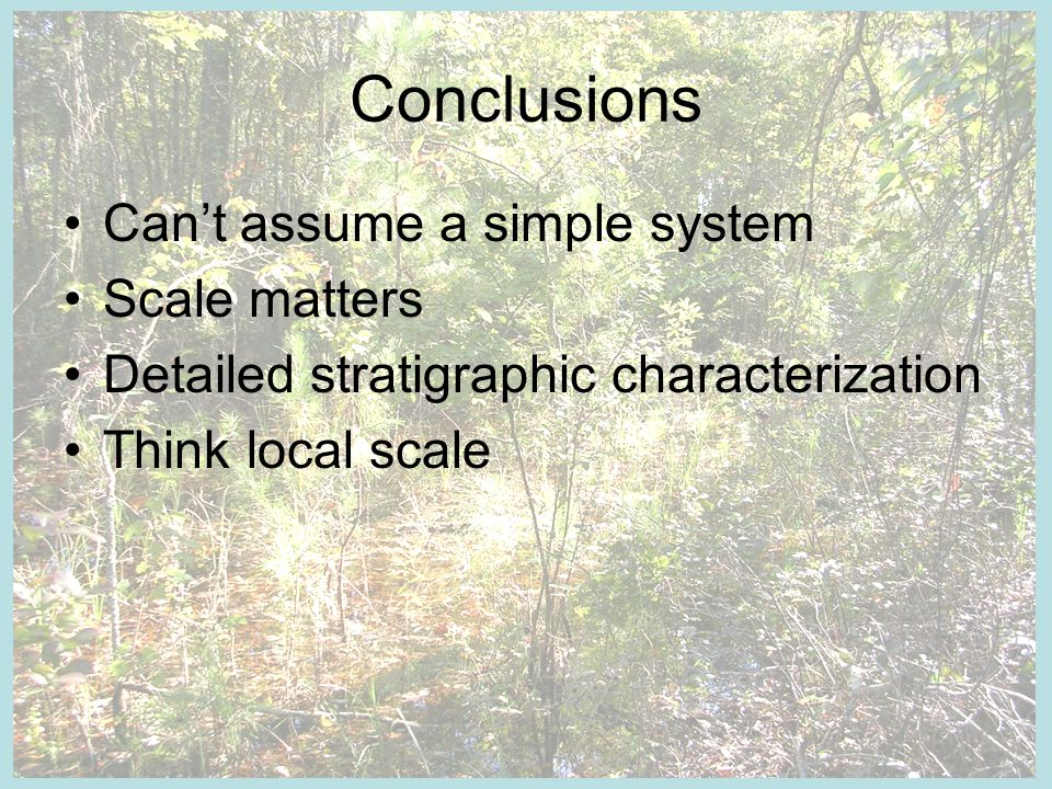 Conclusions Cant assume a simple system Scale matters Detailed stratigraphic characterization Think local scale