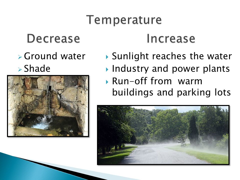 Affects: Amount of Dissolved Oxygen Rate of photosynthesis Sensitivity of organisms- small changes can cause death for some animals Thermal pollution- adding warm water to river Industries use water to cool machines and warm water goes back into river