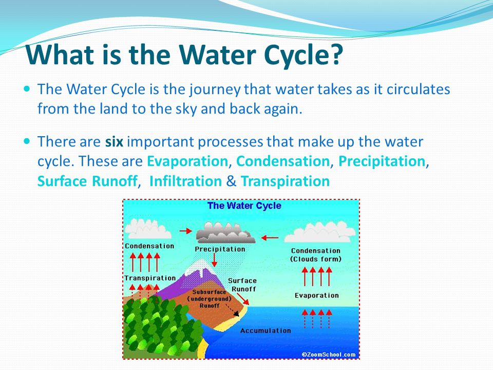 Runoff Water Cycle What is The Water Cycle
