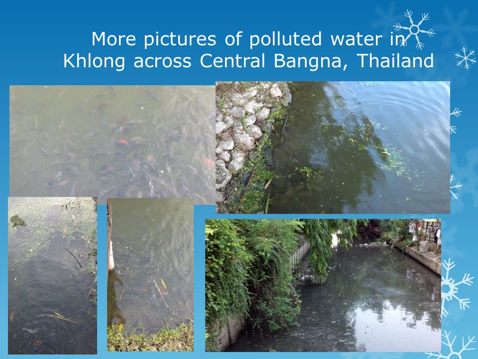 More pictures of polluted water in Khlong across Central Bangna, Thailand