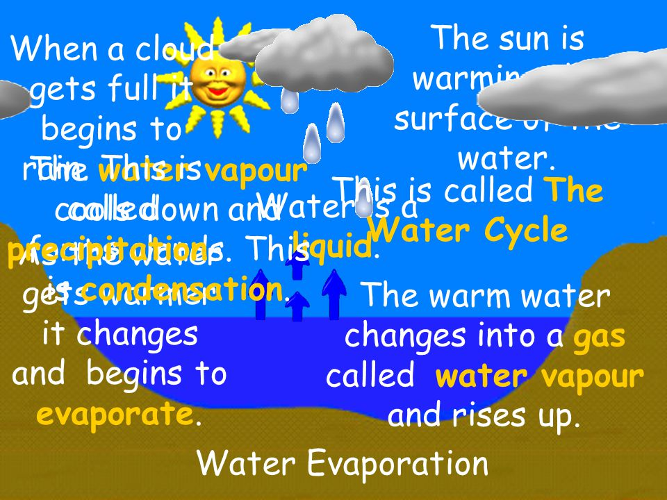 Water Evaporation The sun is warming the surface of the water. As the water gets warmer it changes and begins to evaporate. The warm water changes int