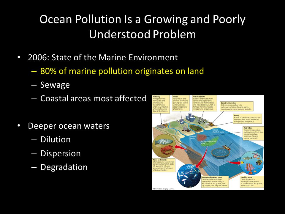 Ocean Pollution Is a Growing and Poorly Understood Problem 2006: State of the Marine Environment – 80% of marine pollution originates on land – Sewage – Coastal areas most affected Deeper ocean waters – Dilution – Dispersion – Degradation