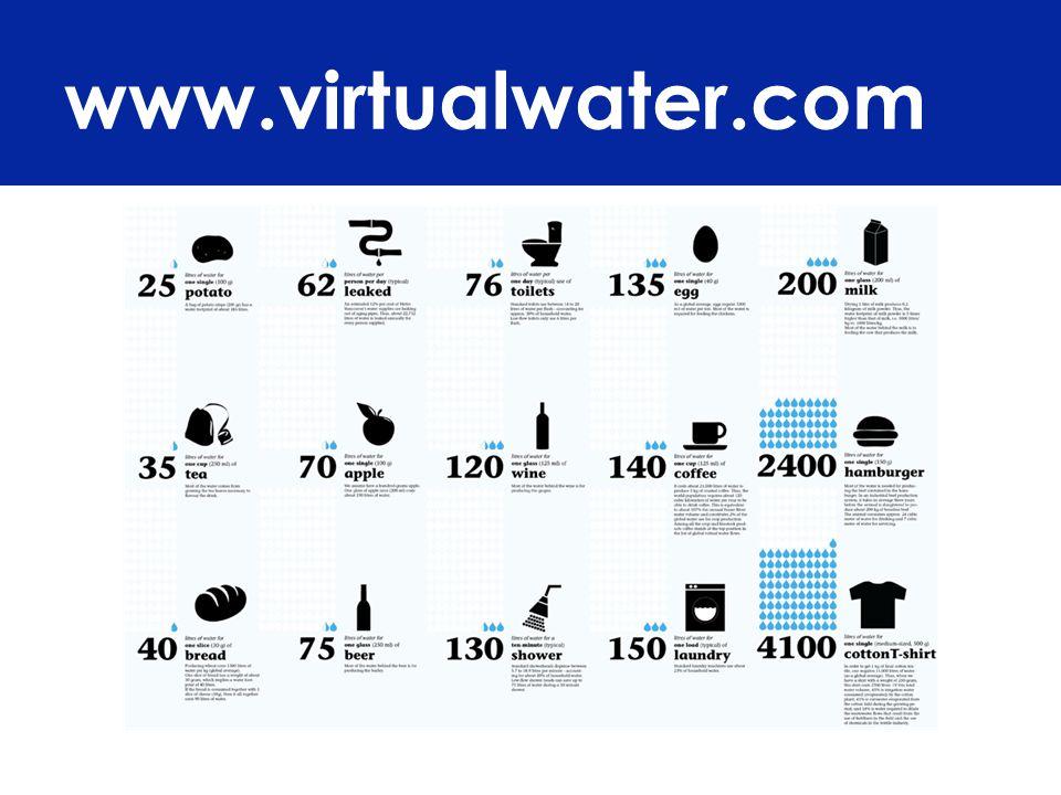 www.virtualwater.com