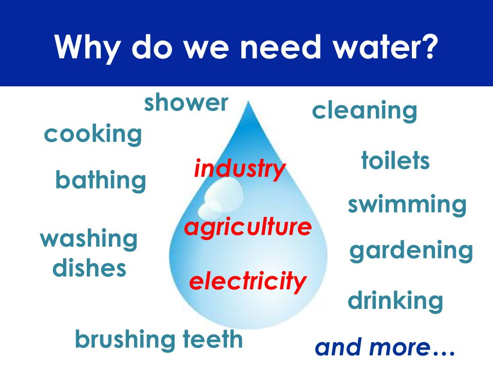 Why do we need water? cooking swimming washing dishes cleaning gardening bathing toilets brushing teeth drinking shower agriculture electricity indust