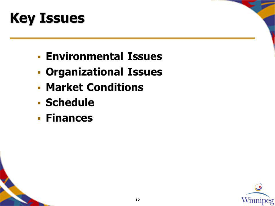 12 Key Issues Environmental Issues Organizational Issues Market Conditions Schedule Finances