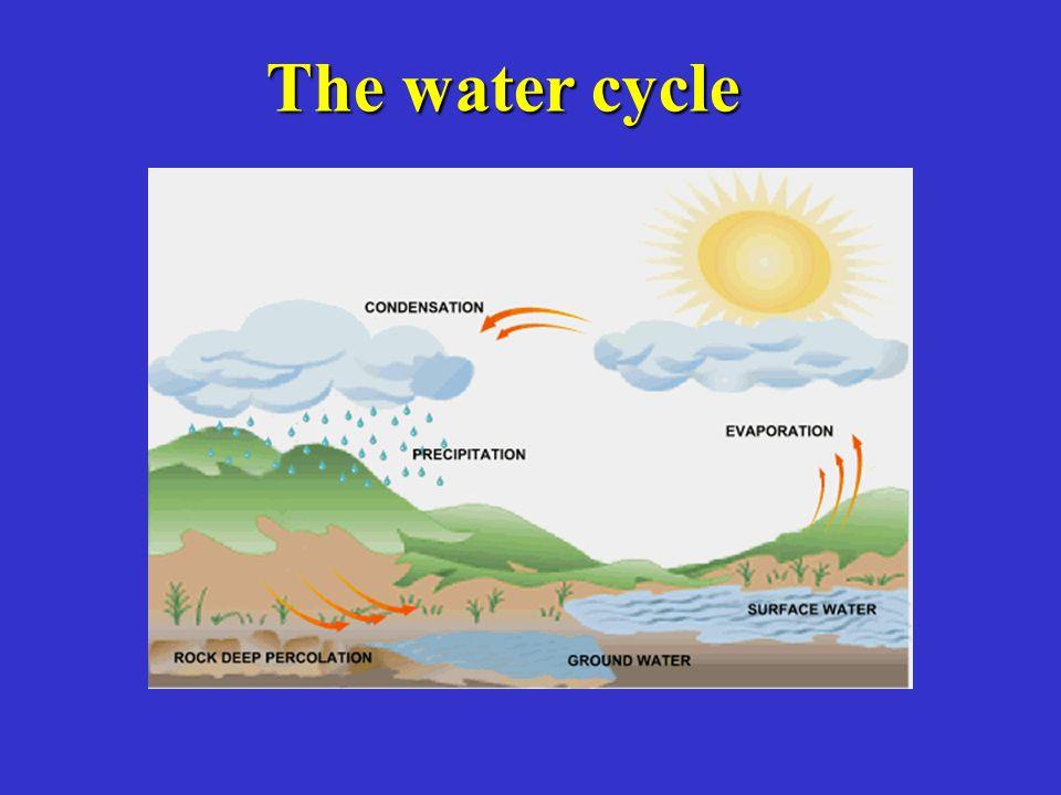 Irrigation - overhead Sprinkler-soaker hose (can have significant water loss)Sprinkler-soaker hose (can have significant water loss)