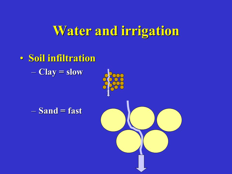 Water and irrigation Soil infiltrationSoil infiltration –Clay = slow –Sand = fast