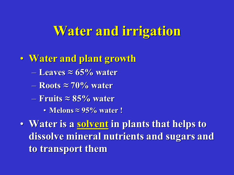 Water and irrigation Water and plant growthWater and plant growth –Leaves 65% water –Roots 70% water –Fruits 85% water Melons 95% water !Melons 95% wa