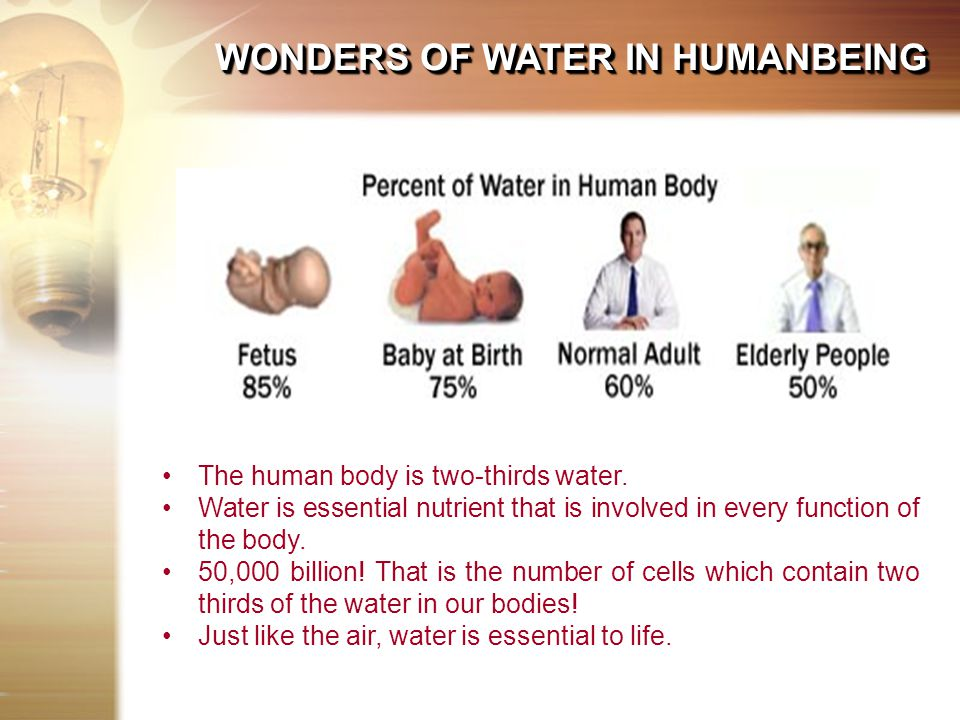 The human body is two-thirds water.
