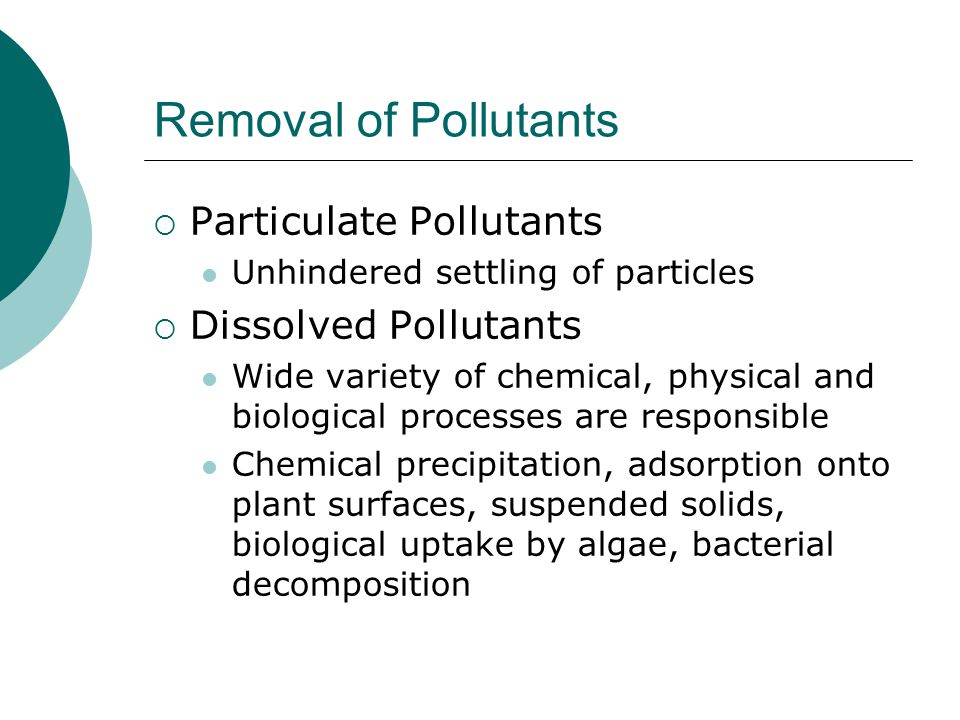 Removal (contd) Oxygen Demanding Wastes Occurs through simple oxidation of organic matter by aerobic bacteria and fungi.