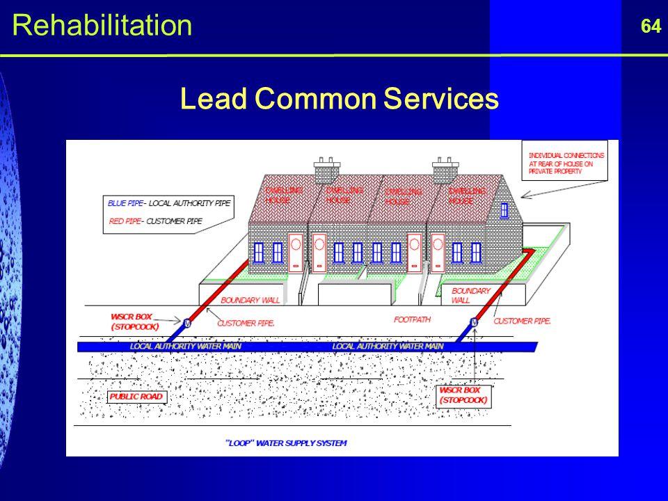 Lead Common Services 64 Rehabilitation