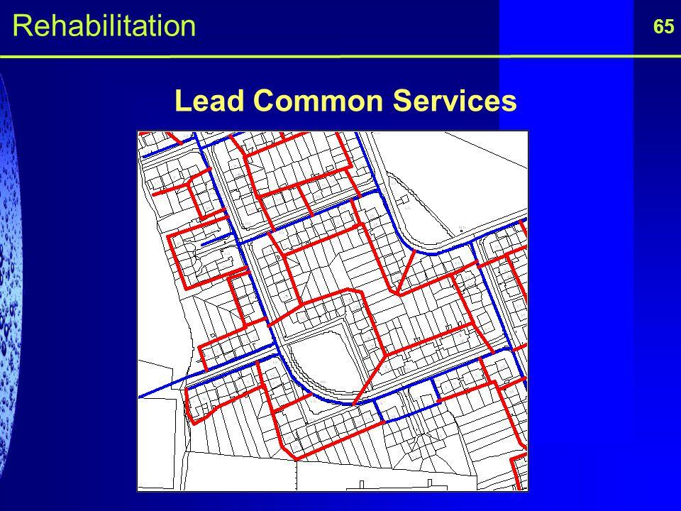 65 Lead Common Services Rehabilitation
