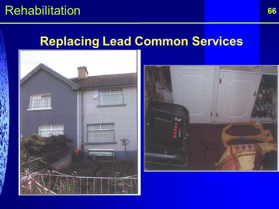 66 Replacing Lead Common Services Rehabilitation