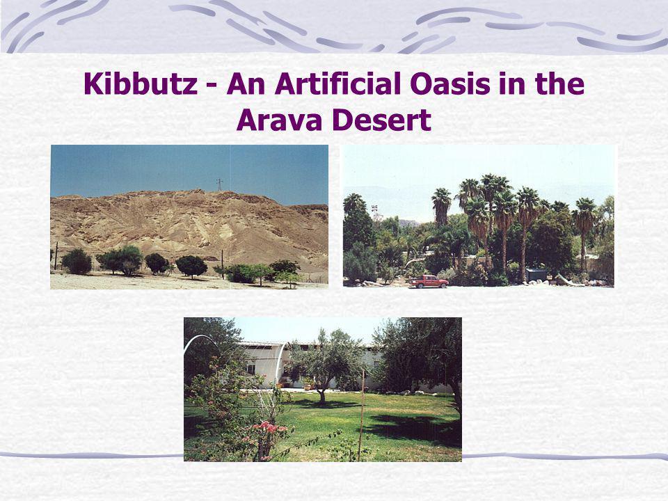 Kibbutz - An Artificial Oasis in the Arava Desert
